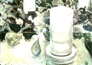Poulets de grain 2015 Huile et impression sur papier Dimensions variables, 4 feuilles A4
